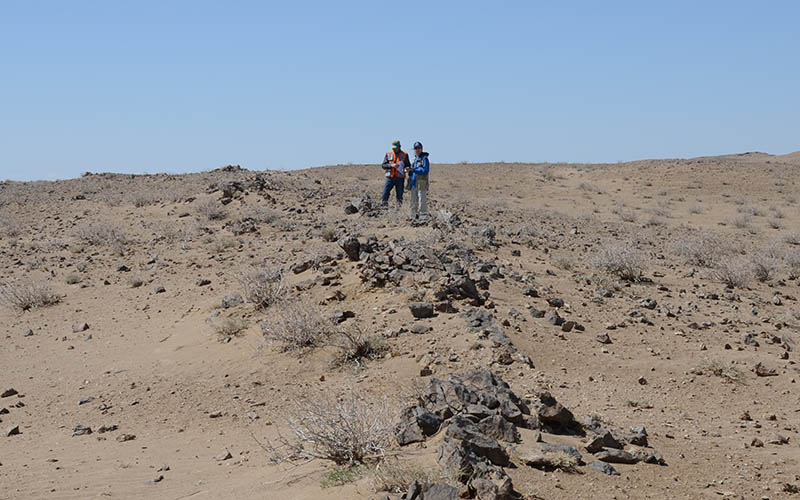 Project and Property Mineral Assessment